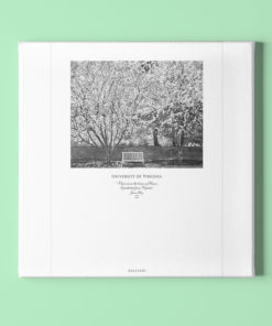 023-GALLIANI-UVA-022-Garden-Wall-Art-Mounted Black & White Photography