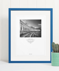 041-GALLIANI-UVA-052b-Lambeth-Field-Wall-Art-Blue-Frame Black & White Photography