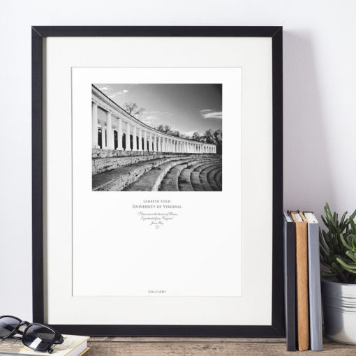 041-GALLIANI-UVA-052b-Lambeth-Field-Wall-Art-Framed