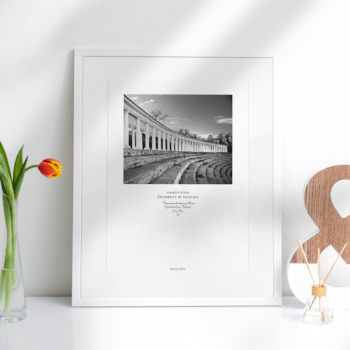 041-GALLIANI-UVA-052b-Lambeth-Field-Wall-Art-Office