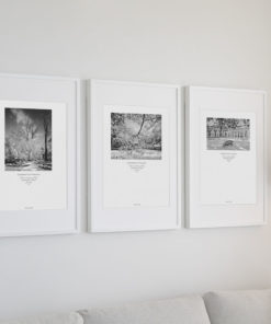 UVA-SnowGarden-Collection-Wall-Art Black & White Photography