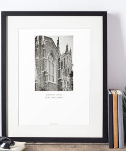 DUKE-Rubenstein-Library-004-GALLIANI-COLLECTION-Home-Decor