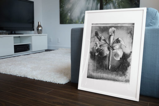 Blue-lily-print-photography-wall-art-galliani-collection-living-room-decor