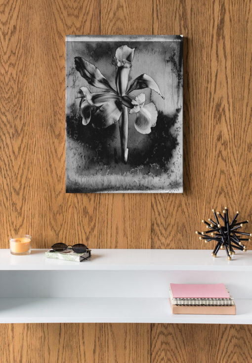 Blue-lily-print-photography-wall-art-galliani-collection-wood