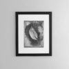 Calla-lily-print-photography-wall-art-galliani-collection-brown-frame- Black & White Photography