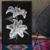 Double-Lily-print-photography-wall-art-galliani-collection-room-decor-wall art