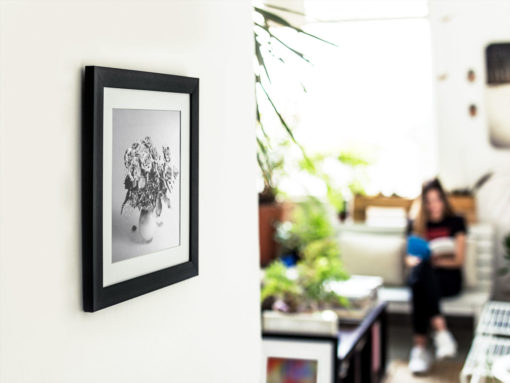 Purple-Roses-print-photography-wall-art-galliani-collection-black-frame