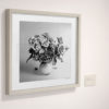 Purple-Roses-print-photography-wall-art-galliani-collection-gallery