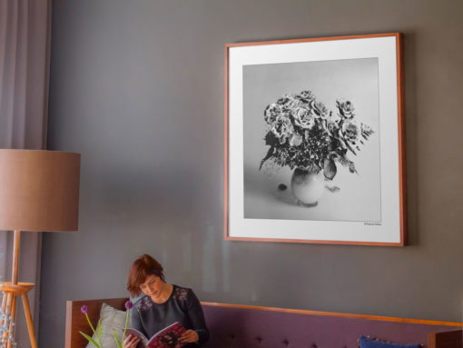Purple-Roses-print-photography-wall-art-galliani-collection-large