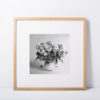 Purple-Roses-print-photography-wall-art-galliani-collection-light-wood-frame