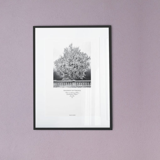 011-GALLIANI-UVA-GinkgoTree-Wall-Art-Black-Frame