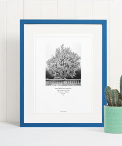 011-GALLIANI-UVA-GinkgoTree-Wall-Art-Blue-Frame