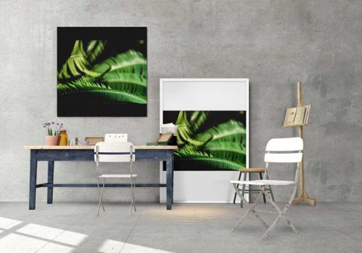 Fern-Leaves-Curling-Canvas-Wall-Art-Decor-framed-and-mounted Color Photography