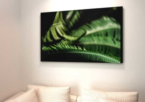Fern-Leaves-Curling-Canvas-Wall-Art-Decoration