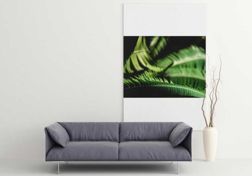 Fern-Leaves-Curling-Canvas-Wall-Art-Home-Decor