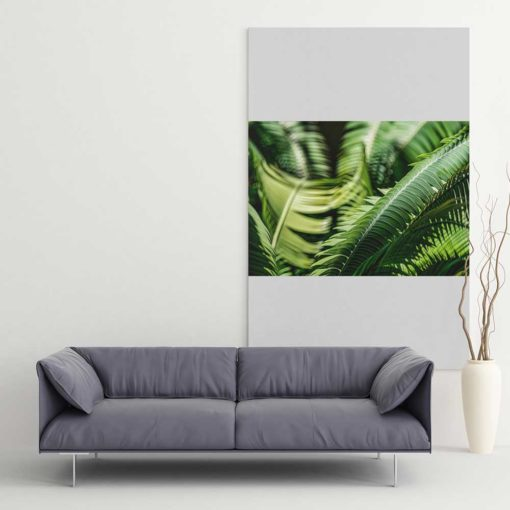 Fern-Plant-Leaves-in-the-Sun-Canvas