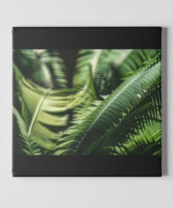 Fern-Plant-Leaves-in-the-Sun-Canvas-Wall-Art-Mount