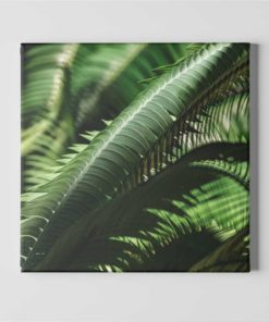 fern-leaves-canvas-wall-art