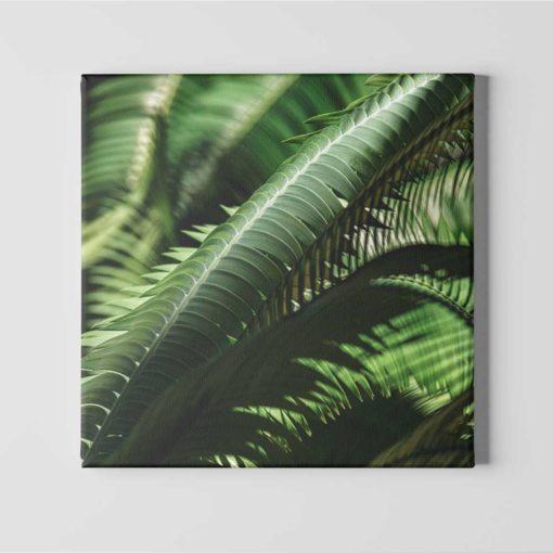 fern-leaves-canvas-wall-art