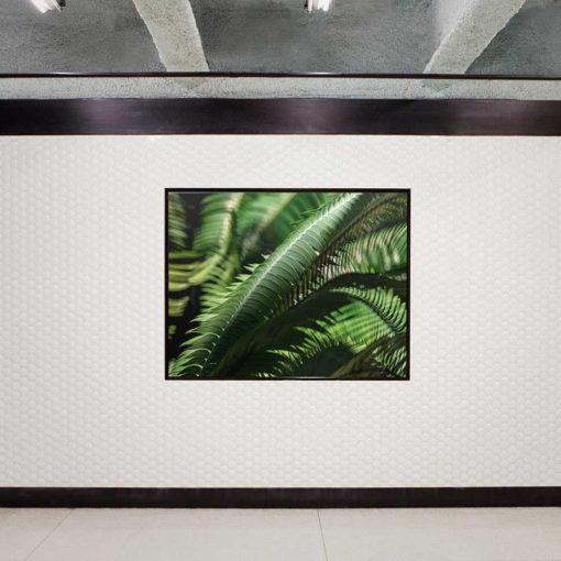 fern-leaves-canvas-wall-art-decor