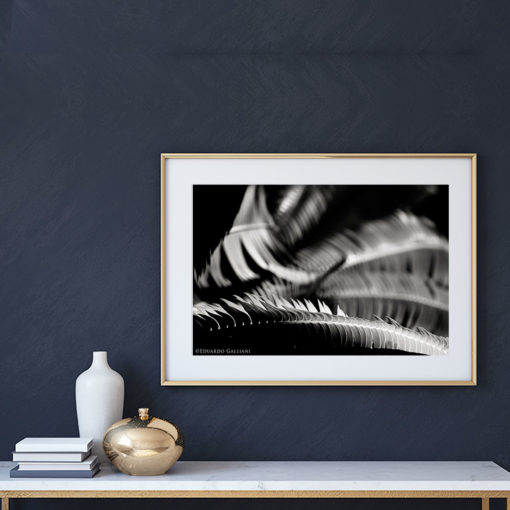 Fern-Plant-Leaves-Resting-Canvas-Wall-Art-Gold-Frame