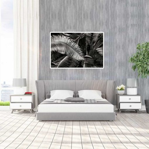 Fern-Plant-Standing-Leaves-Black-&-White-Canvas-Wall-Art--Large-Mount black and white photography