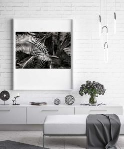 Fern-Plant-Standing-Leaves-Black-&-White-Canvas-Wall-Art-White-Frame black and white photography