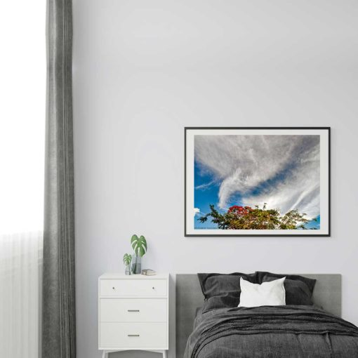 royal-poinciana-tree-blooms-canvas-wall-art-black-frame